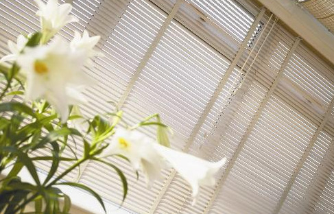 You are browsing images from the article: Venetian Blinds